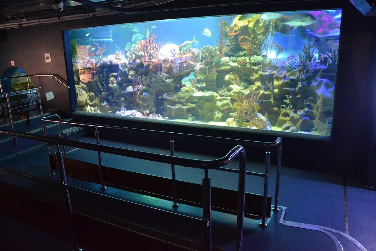 Большой панорамный аквариум