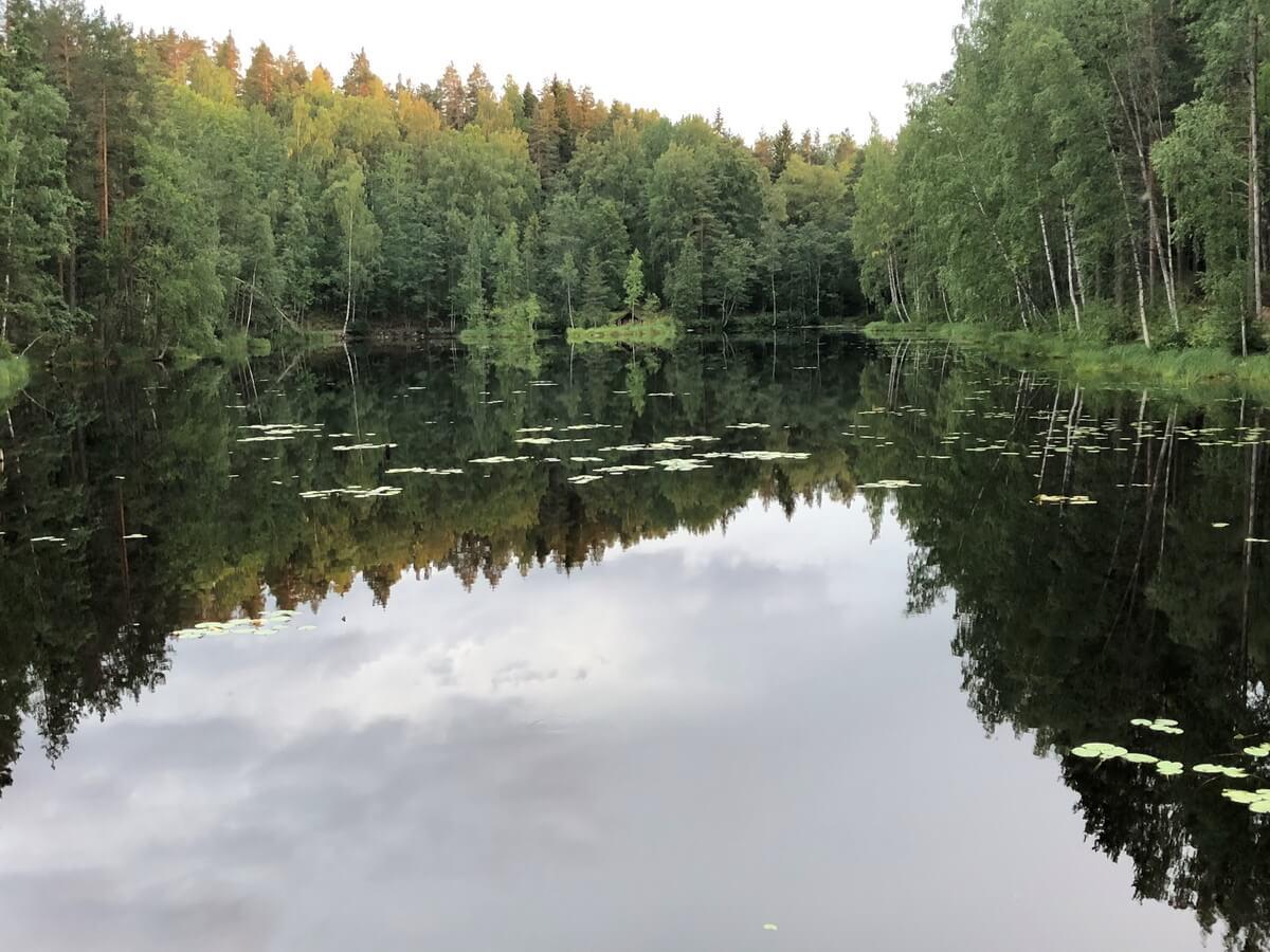 Для любителей рыбалки здесь настоящий рай