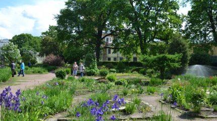 Ботанический сад открывает новый сезон лекций для садоводов