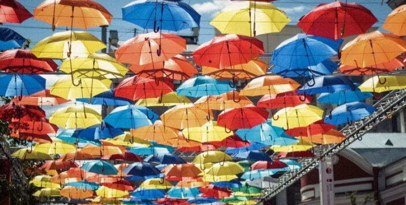 Помогите «Парящим зонтикам»!