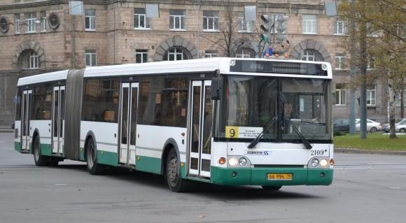 обычный социальный автобус