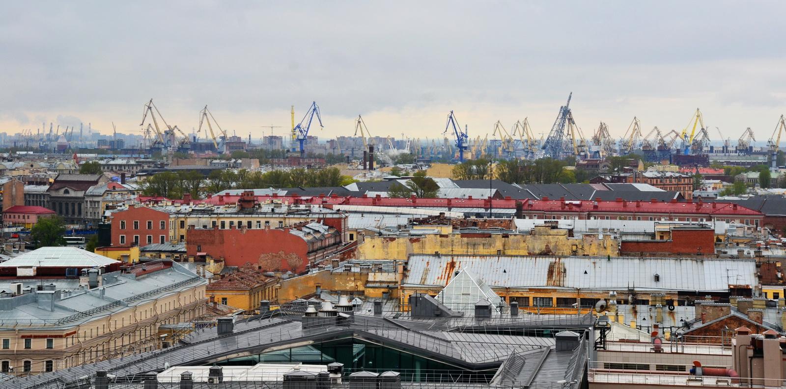 Вид на краны стивидорных компаний Большого Порта Санкт-Петербург