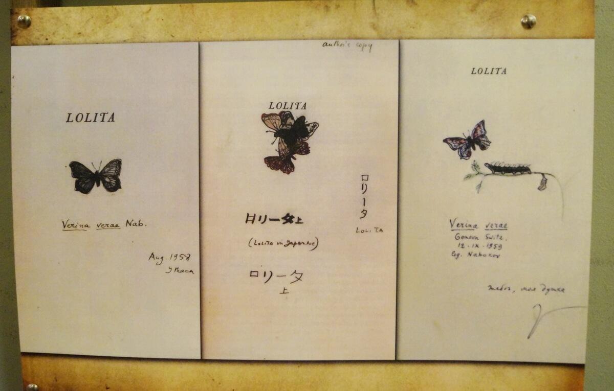 Именами литературных персонажей Набокова названы многие, открытые Владимиром Владимировичем бабочки