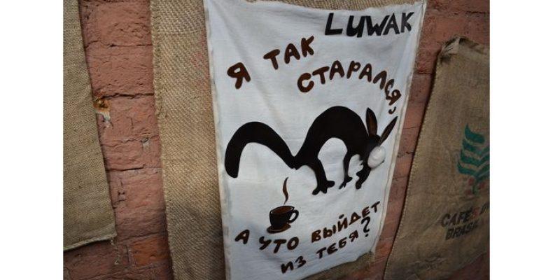 Откуда «выходит» самый дорогой кофе в мире?