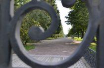 Парки Петербурга снова открылись. Но пока не все