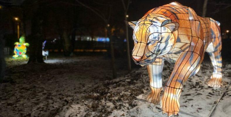 Уличный Иллюзион «Планета Света» в Московском Парке Победы до 20 февраля 2021