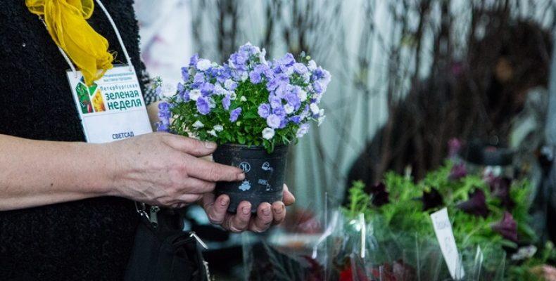 «Петербургская зеленая неделя» пройдет в СКК и Ленэкспо 18 – 21 и 25 – 28 апреля