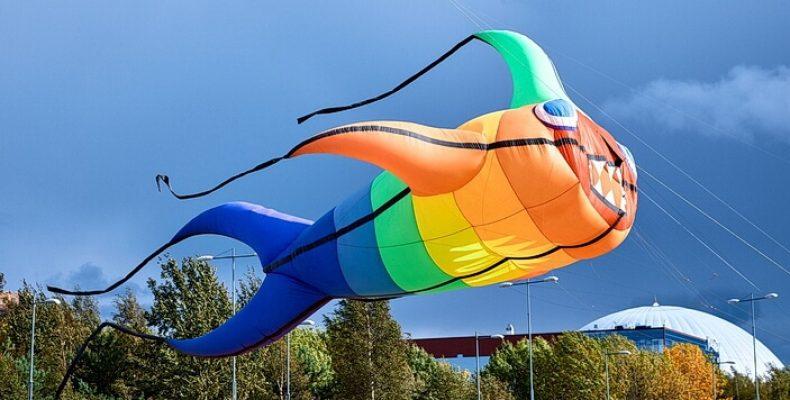 На фестивале «Летать легко» 31 августа запустят самого большого воздушного змея в России